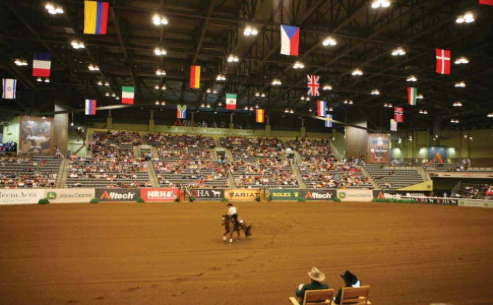 World-Class Megapixel Video Keeps Watch at World Equestrian Games
