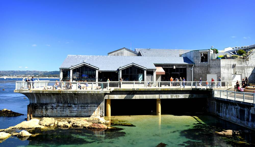 SSDC: Arecont Vision Video Surveillance Deployed By Monterey Bay Aquarium, California
